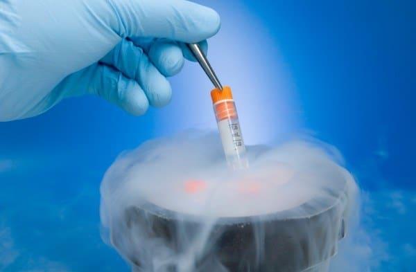 embryon congele TEC