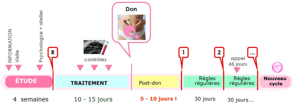 processus-don-ovocytes-eugin