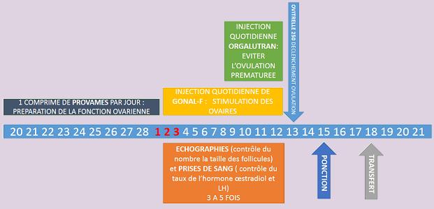 Le protocole court